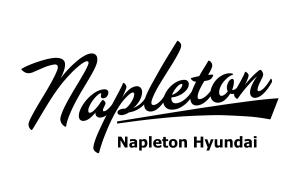 Napleton Hyundai Logo