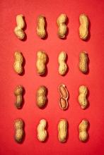 Grid of Peanuts