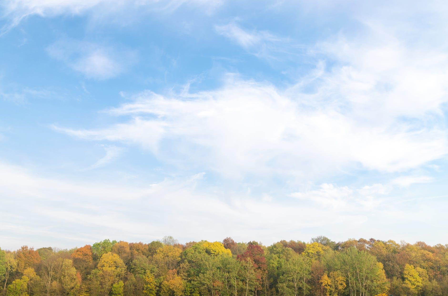 autumn background beautiful bright