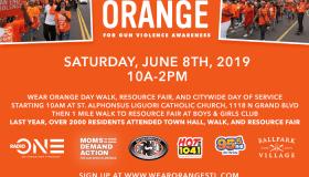 Wear Orange Day